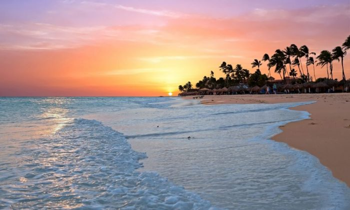 Aruba Timeshare Rentals